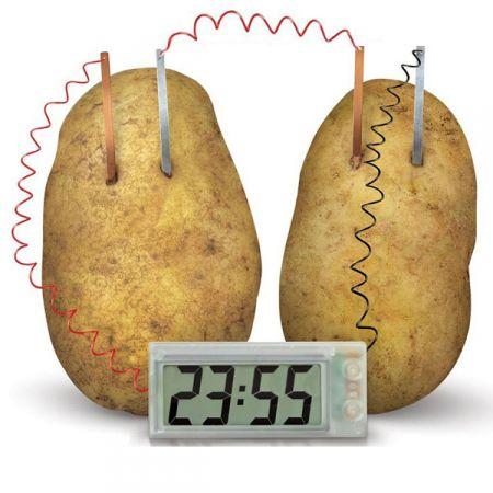 Экологические часы «Работающие от овощей»