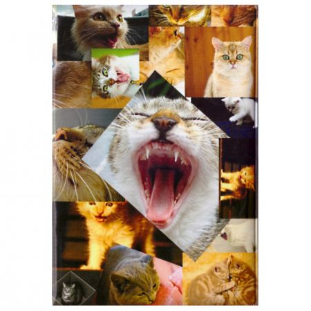 """Обложка для паспорта """"Фото кошек"""""""