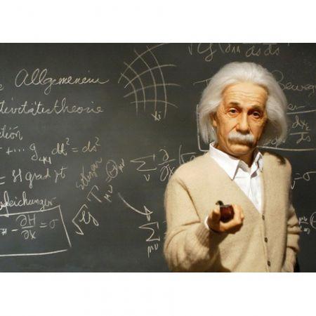 Обложка для автодокументов N 9 Энштейн
